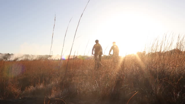 couple bike through meadow, towards sunrise over mist - andare in mountain bike video stock e b–roll