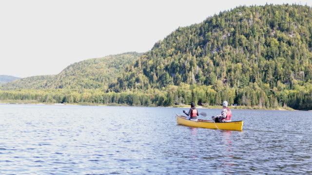 couple canoeing at parc national du mont-tremblant, quebec, canada - national park stock videos & royalty-free footage