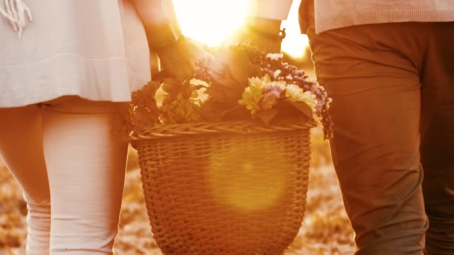 couple carrying basket with flowers - mid adult couple stock videos & royalty-free footage