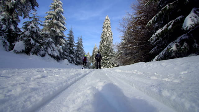 Couple cross country skiing on sunny day