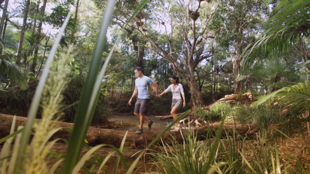 WS, PAN, Couple crossing stream in tropical rainforest, Mossman, Queensland, Australia