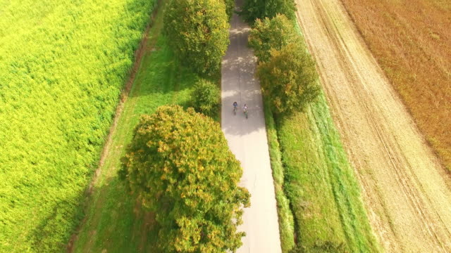 AERIAL Couple cycling on a tree lined country road