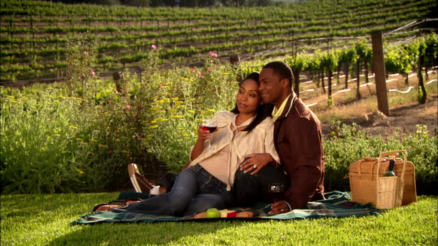 WS Couple drinking wine and toasting on picnic blanket in vineyard / Paso Robles, California, USA