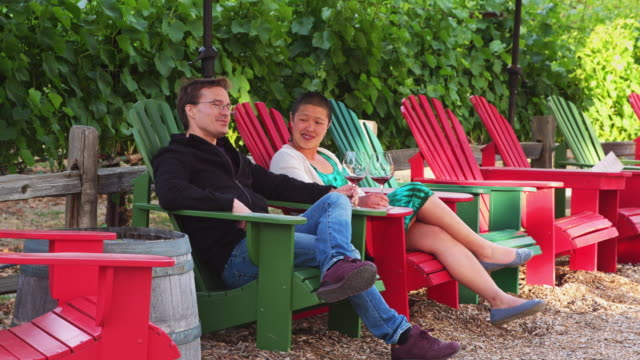 couple drinking wine beside vineyard - adirondack chair stock videos & royalty-free footage
