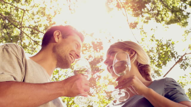 Couple drinking wine together in the park on sunny day