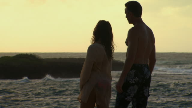 couple embracing on beach with waves - turtle bay hawaii stock videos and b-roll footage
