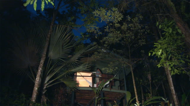 ws, la, couple embracing on tree house balcony in tropical rainforest at dusk, mossman, queensland, australia - treehouse stock videos & royalty-free footage
