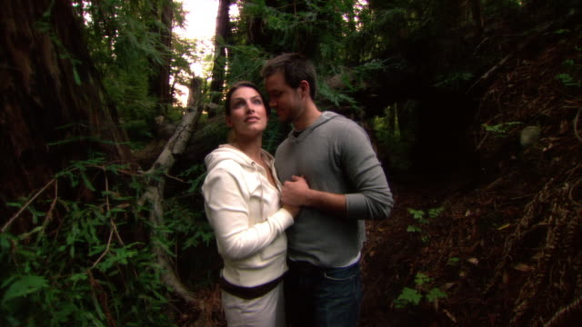ms, couple embracing, standing in redwood forest, portrait, ragged point, california, usa - ragged point stock videos and b-roll footage