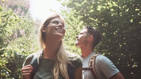 couple enjoying hiking in forest - boyfriend stock videos & royalty-free footage