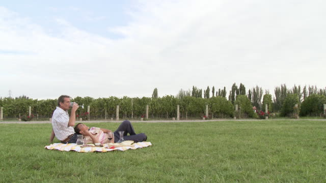stockvideo's en b-roll-footage met couple enjoying picnic in vineyard - argentijnse etniciteit