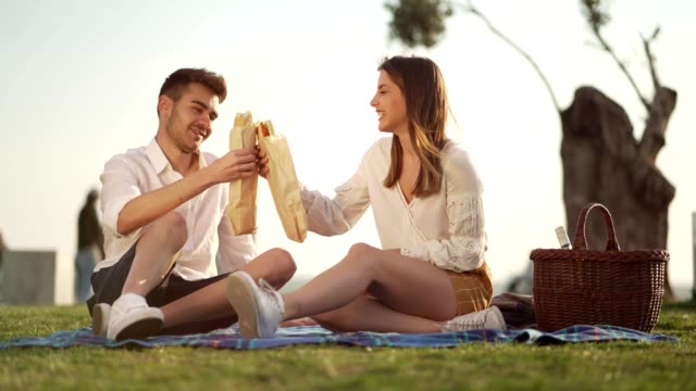 couple enjoying sandwiches on picnic - picnic stock videos & royalty-free footage