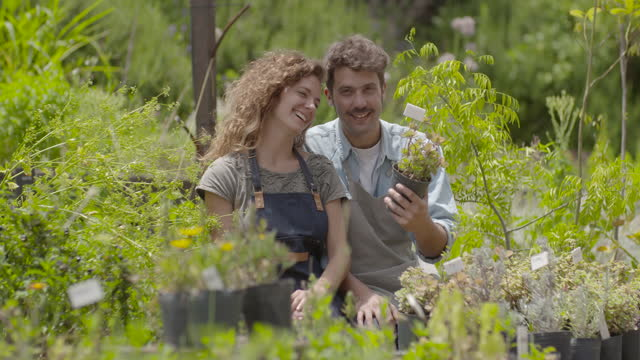 couple examining plant in nursery - three quarter length stock videos & royalty-free footage