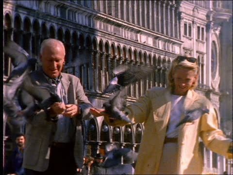 couple feeding pigeons - 1997 stock videos & royalty-free footage