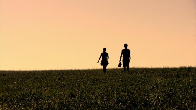 Couple Field Walk (HD)