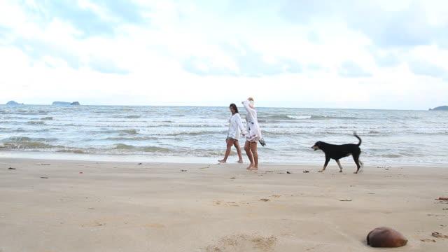 vídeos de stock, filmes e b-roll de garota do casal desfrutar e relaxar na praia - brincadeira de pegar