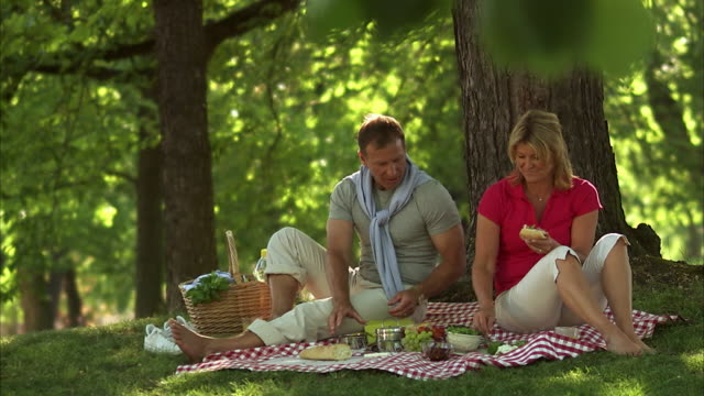 vídeos y material grabado en eventos de stock de a couple having a picnic in a park stockholm sweden. - cesta de picnic