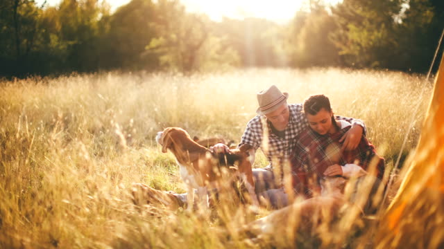 Couple having fun with their playful dogs on romantic autumn camping