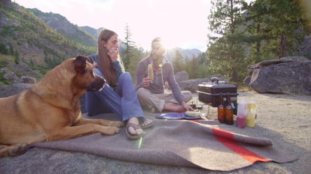 vídeos de stock e filmes b-roll de ms couple having picnic on blanket at wilderness campsite while dog watches - picnic