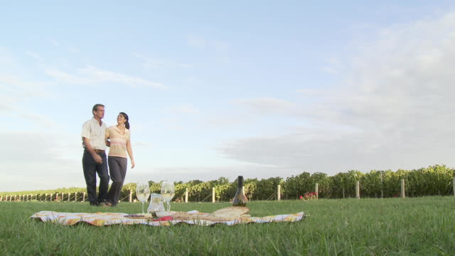 Couple having wine at picnic in vineyard