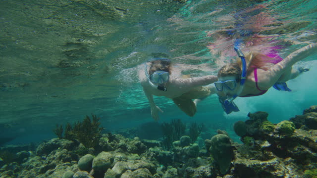 vídeos de stock e filmes b-roll de couple holding hands and snorkeling underwater in ocean / tobago cays, saint vincent and the grenadines - activity