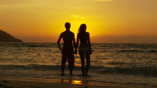 ws couple holding hands looking at sunset standing in water on beach / seychelles - stehen stock-videos und b-roll-filmmaterial