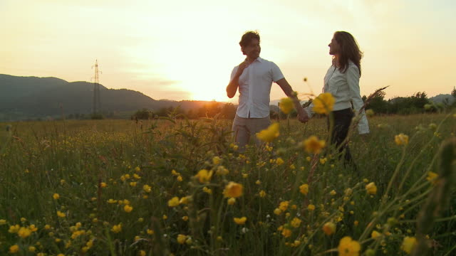 ms pan couple holding hands walking in meadow at sunset / vrhnika, slovenia - vrhnika stock videos and b-roll footage