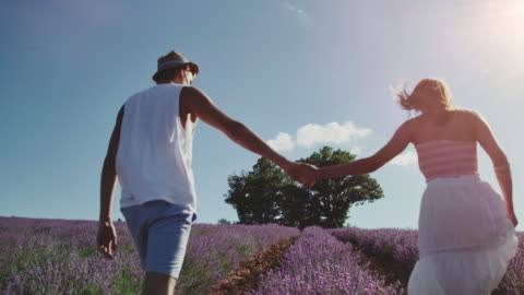 couple holding hands while walking on field - france stock videos & royalty-free footage
