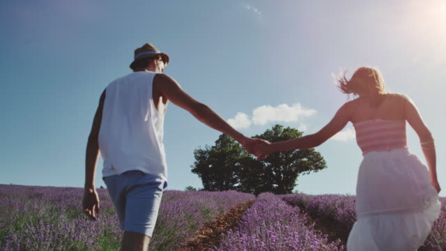 couple holding hands while walking on field - french stock videos & royalty-free footage
