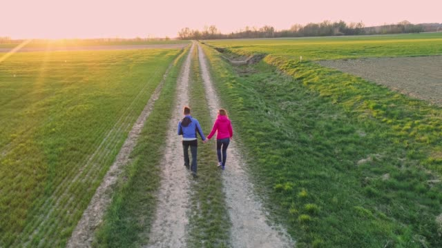 ms couple holding hands,walking among idyllic,rural fields - the way forward stock videos and b-roll footage