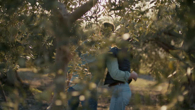 couple hugging in olive orchard - whispering stock videos & royalty-free footage