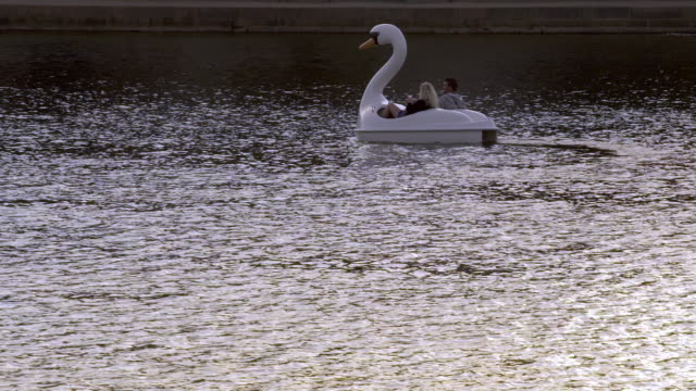 couple in a swan boat in copenhagen - pedal boat stock videos and b-roll footage
