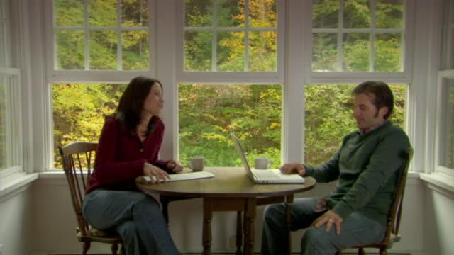 ms, couple in country house, man using laptop, phoenicia, new york, usa - アルスター郡点の映像素材/bロール