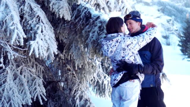 couple in love in winter nature - dorso umano video stock e b–roll