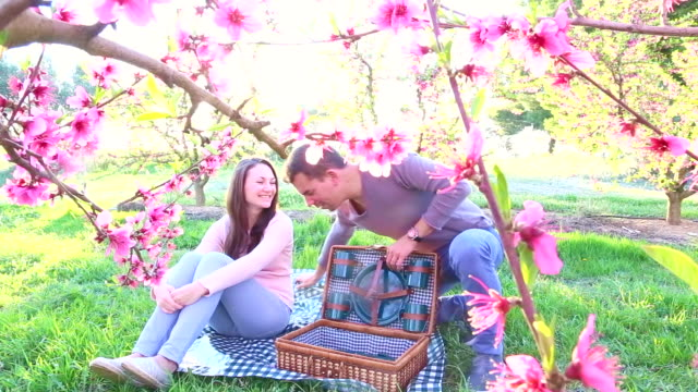 vídeos de stock, filmes e b-roll de couple in love sitting and enjoying romantic picnic time during spring season between the blooming pink trees in the catalonia countryside with a candid, natural moment, warm colors and light. - prato de plástico