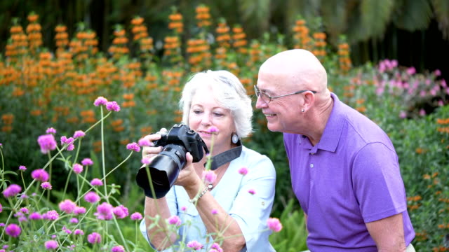 couple in park, photographing flowers - see other clips from this shoot 56 stock videos & royalty-free footage