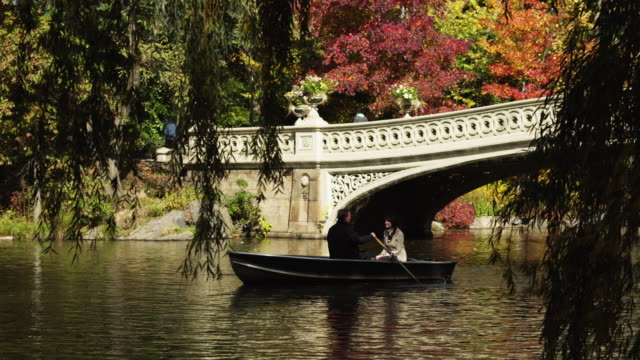 ws pan couple in row boat at central park lake / new york city, new york state, usa - ruderboot stock-videos und b-roll-filmmaterial