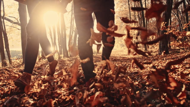 SLO MO Couple kicking dry leaves in the forest