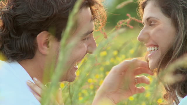 cu couple kissing in meadow at sunset / vrhnika, slovenia - vrhnika stock videos and b-roll footage