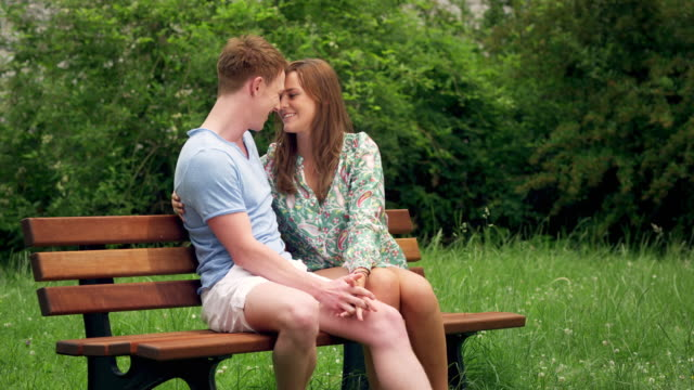 couple kissing on bench - hugging tree stock videos and b-roll footage