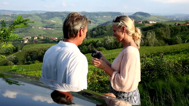 couple leave car, eat grapes from vine above vineyard - italian culture stock videos & royalty-free footage
