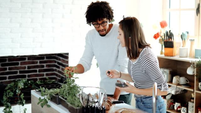 vídeos de stock e filmes b-roll de couple looking after their little home garden - colocar planta em vaso