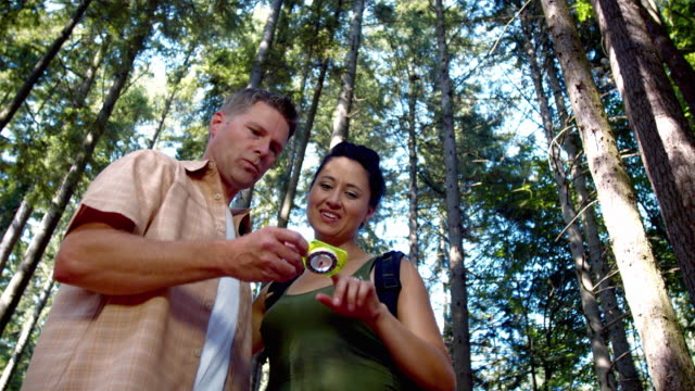 ms la couple looking at compass, standing in forest / lynnwood, washington state, usa - confusion stock videos & royalty-free footage