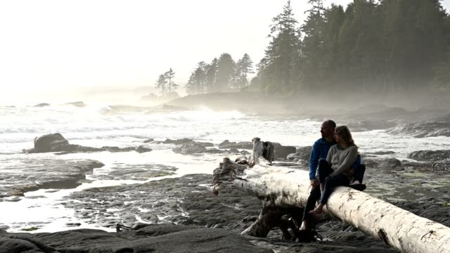 couple looking away while relaxing on drift wood - pacific northwest usa stock videos & royalty-free footage
