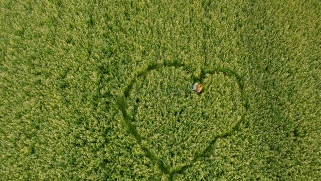 AERIAL Couple making heart symbol in the field