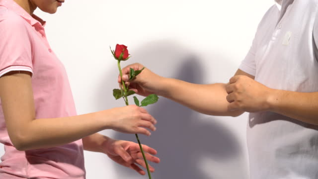 a couple, men give women roses on valentine's day women wear pink polo shirt on white isolated background. - polo shirt stock videos & royalty-free footage