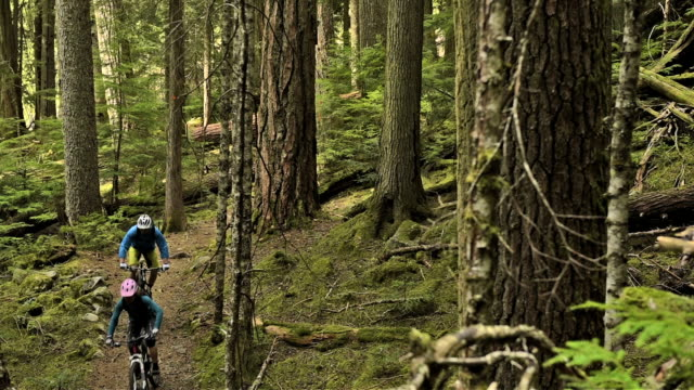 Couple Mountain Biking in an Old Growth Forest