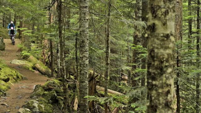 マウンテンバイクカップルの原生林 - クロスカントリーサイクリング点の映像素材/bロール