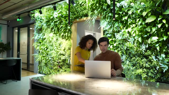 couple of business persons working in a modern green office - lush foliage stock videos & royalty-free footage