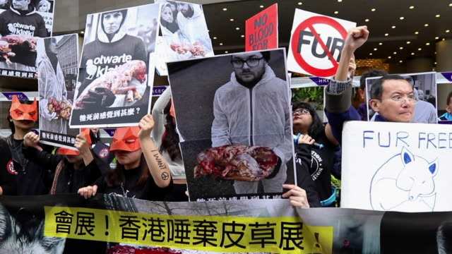 couple of dozen protester protest in front of hong kong convention and exhibition centre before 2018 hong kong international fur & fashion fair. - animal hair video stock e b–roll
