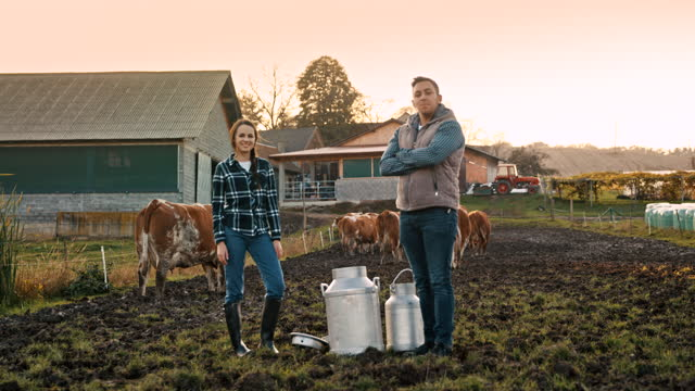 slo mo couple of farmers posing on the pasture - dairy product stock videos & royalty-free footage
